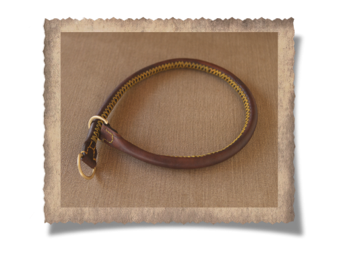 The Simonstown Trainer Dog Collar